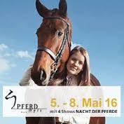 Pferd Wels 2016